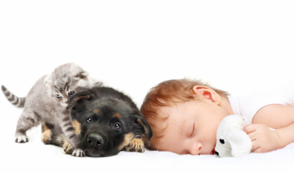 bigstock-Sleeping-Baby-Boy-with-toy-dog-52452730