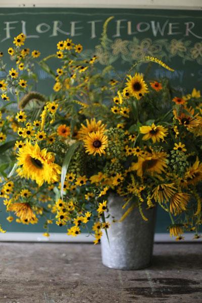 20150618_sunflower_1