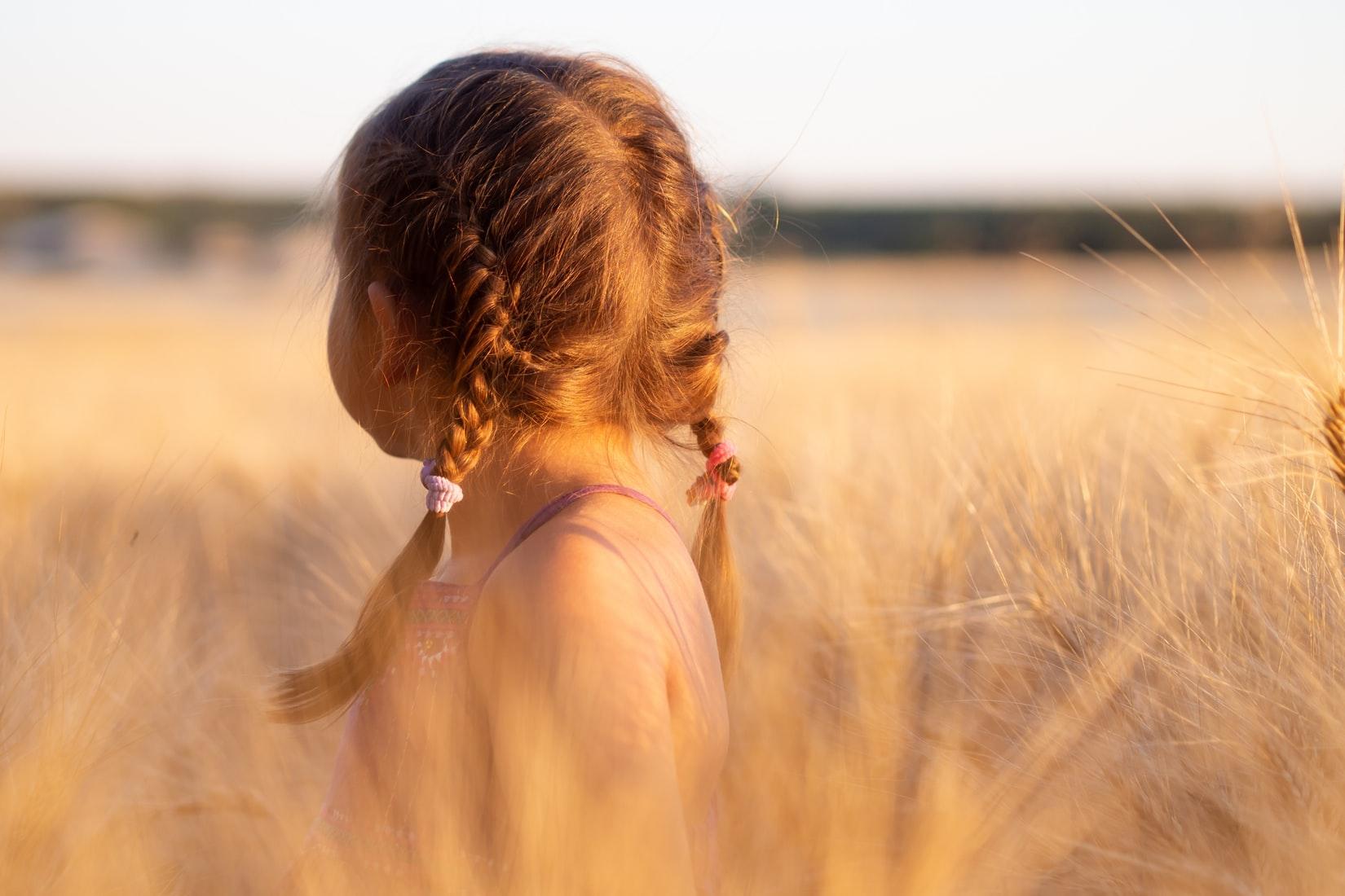 小麦畑で背を向ける女児